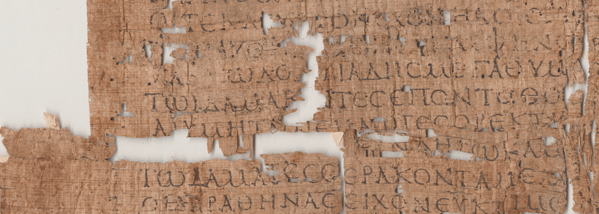 Detail from P.Tebt. 2.265 (Iliad 2.339-652), Center for the Tebtunis Papyri, UC Berkeley